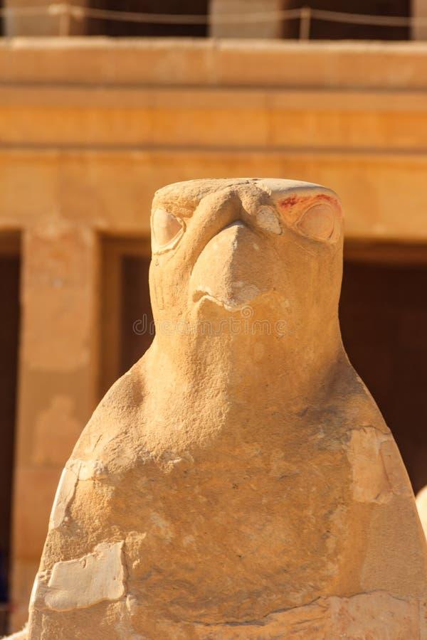 Escultura egípcia antiga do falcão do deus Horus no templo da morgue de Hatshepsut em Luxor, Egito fotos de stock