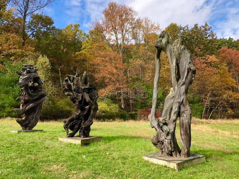 Esculturas de la madera de deriva de la secoya, traídas de las playas de California septentrional a las montañas de Catskill foto de archivo libre de regalías