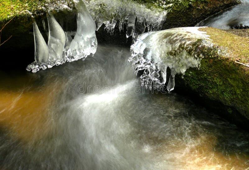 Esculturas do gelo foto de stock