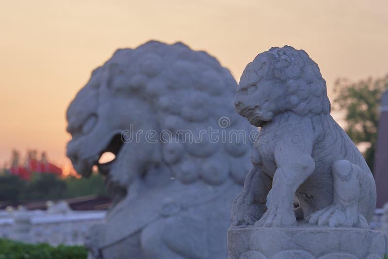 Esculturas do leão no por do sol Pra?a de Tiananmen, Beijing, China fotografia de stock