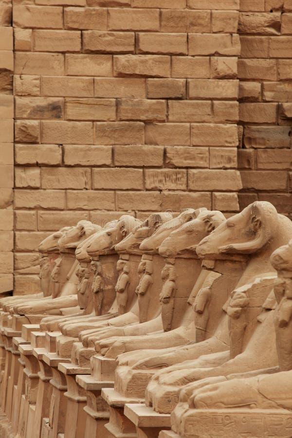 Esculturas no templo de Karnak imagens de stock
