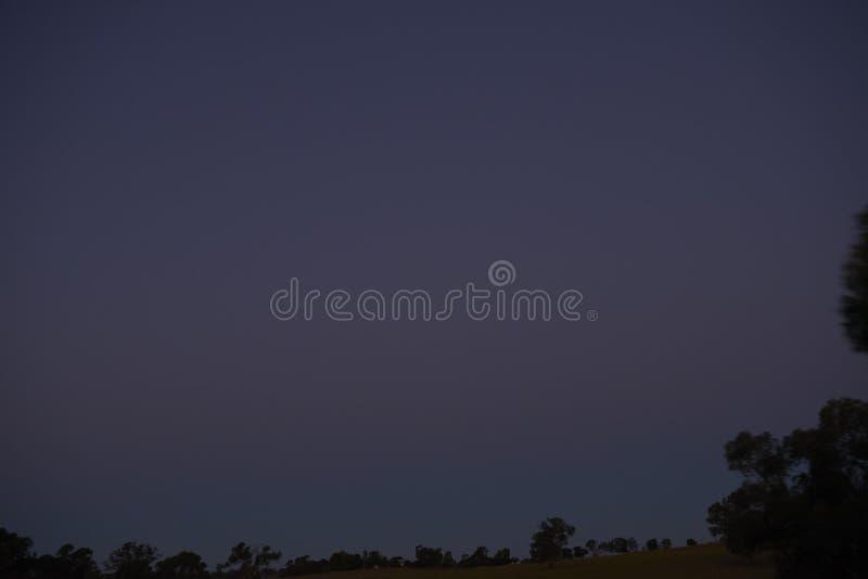 Escuro - céu noturno azul com silhuetas da árvore imagem de stock