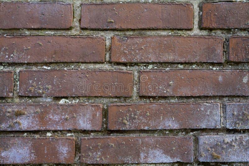 Escuro - fundo da parede de tijolo vermelho imagens de stock
