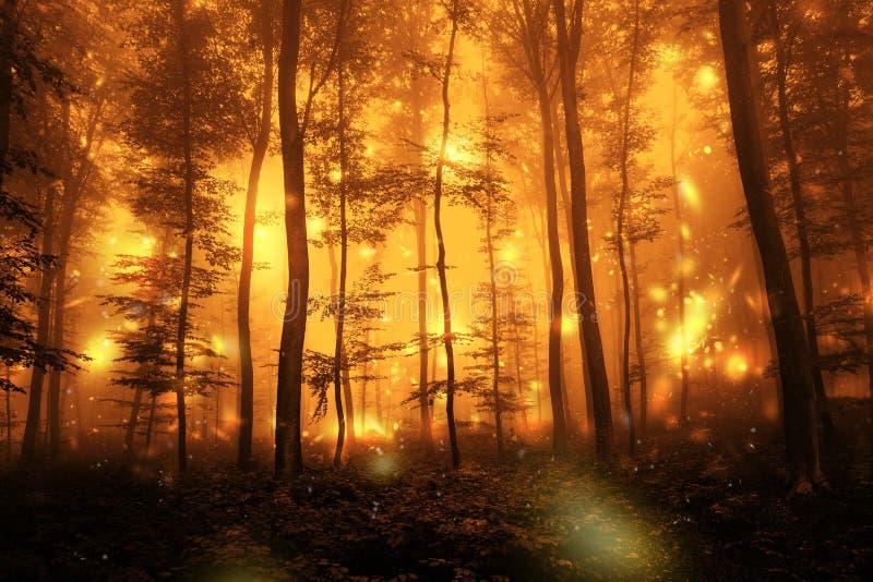 Escuro - paisagem artística assustador vermelha da floresta imagens de stock