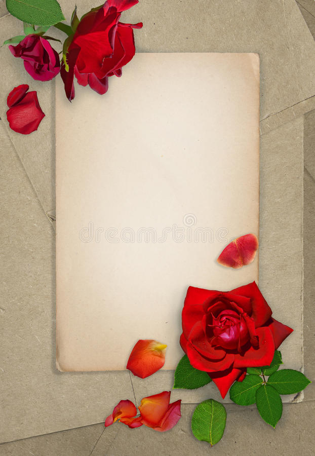 Escuro - rosas vermelhas e pétalas no papel velho Cartão do Grunge Lugar para o texto Configuração lisa imagens de stock royalty free