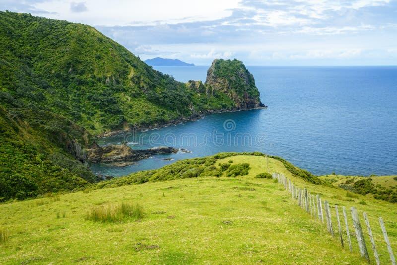 Escursione del passaggio pedonale costiero di Coromandel, la Nuova Zelanda 58 immagini stock