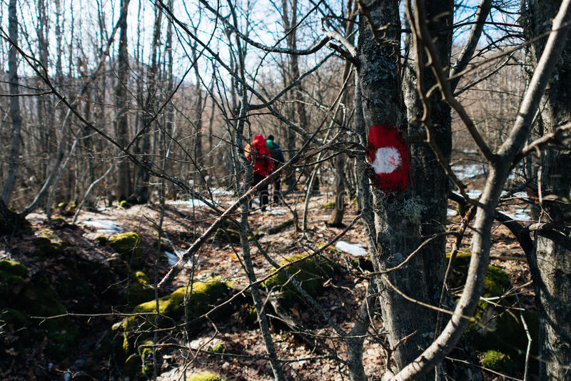 Escursione del segno sull'albero immagini stock libere da diritti