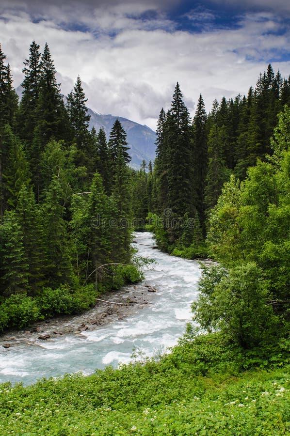 Escursione della traccia del lago berg fotografie stock
