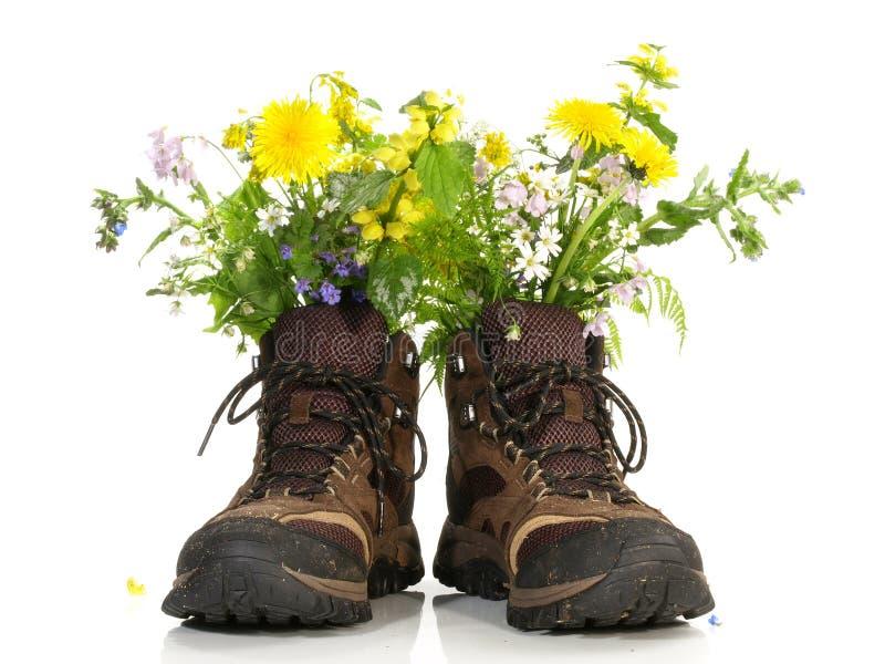 Escursione delle scarpe con i fiori immagini stock libere da diritti