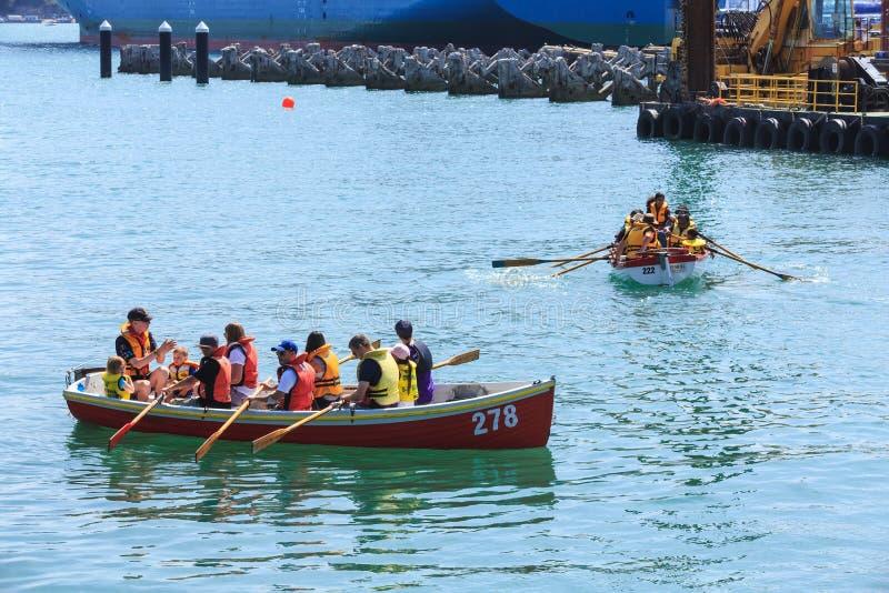 Escuteiros de mar nos barcos a remos no porto de Auckland foto de stock