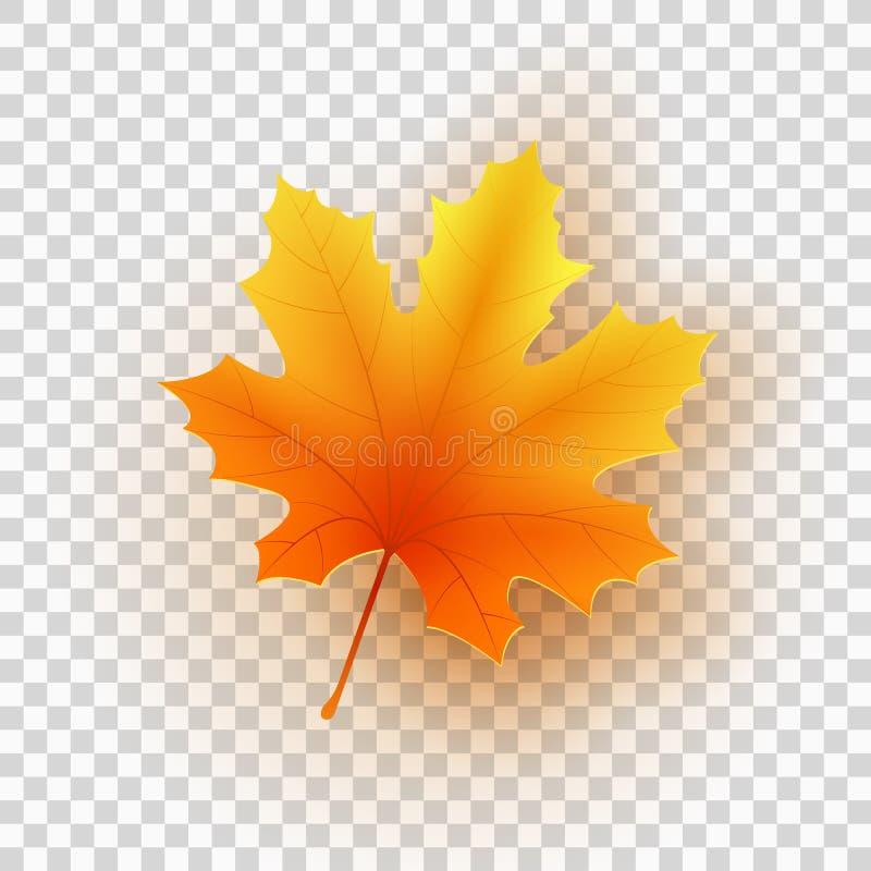 Esdoornblad op een transparante achtergrond wordt geïsoleerd die Vector illustratie royalty-vrije illustratie