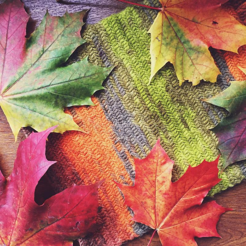 Esdoornbladeren met het breien stock foto