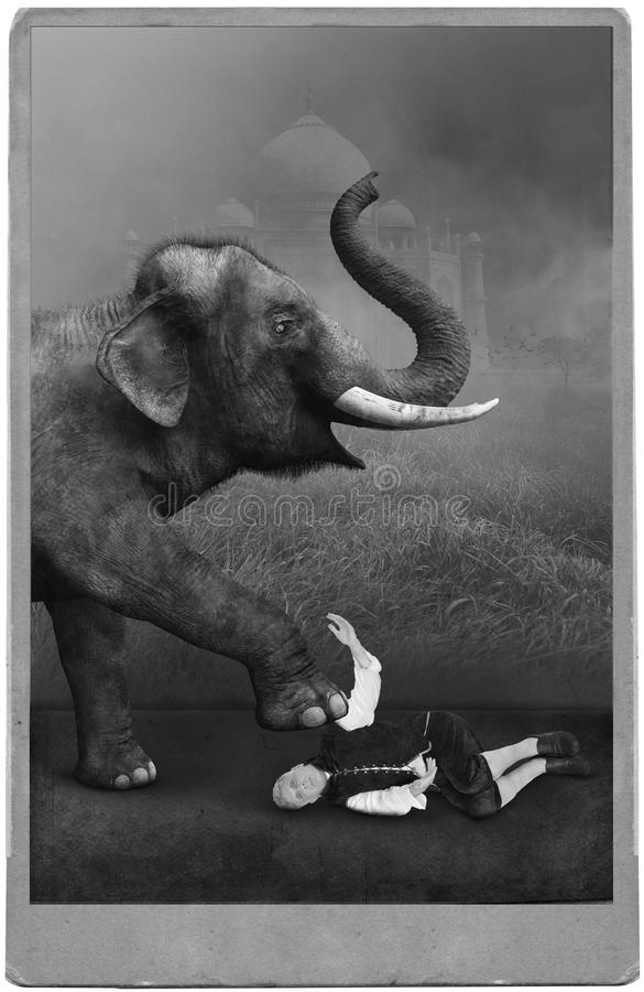 Esecutore di circo d'annata, carnevale, elefante immagini stock libere da diritti