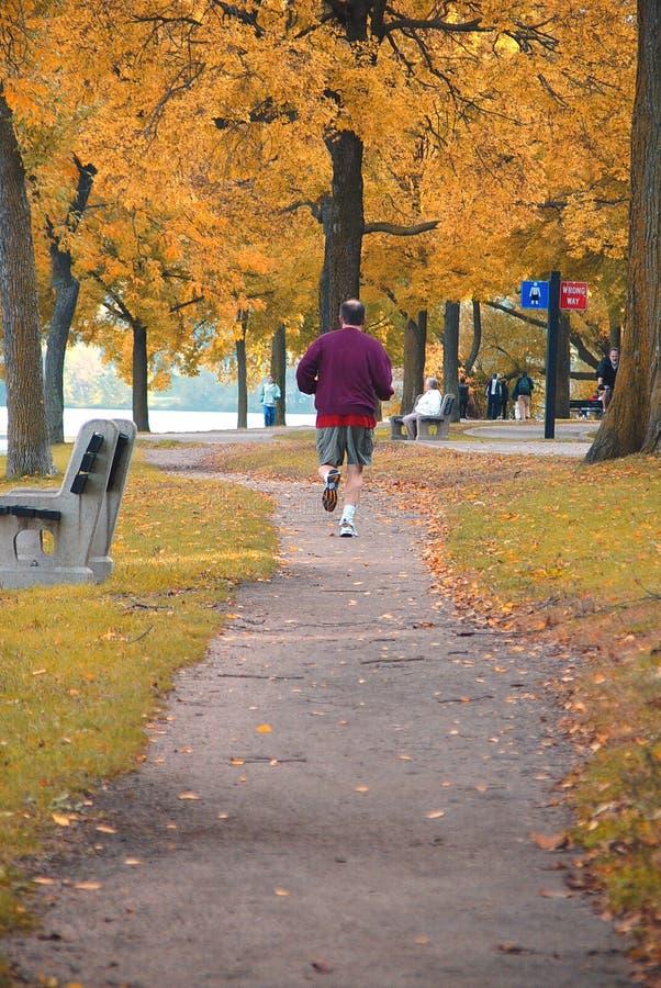 Esecuzione di autunno fotografia stock