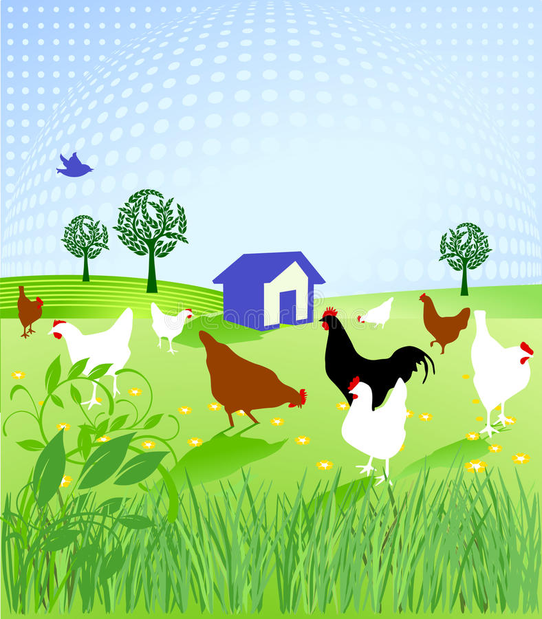Esecuzione di pollo royalty illustrazione gratis