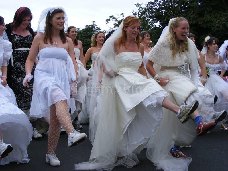 Esecuzione nuziale di divertimento dell'Irlanda immagini stock
