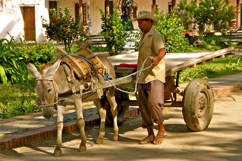 Esel Chariot, Mompos, Kolumbien lizenzfreie stockfotografie