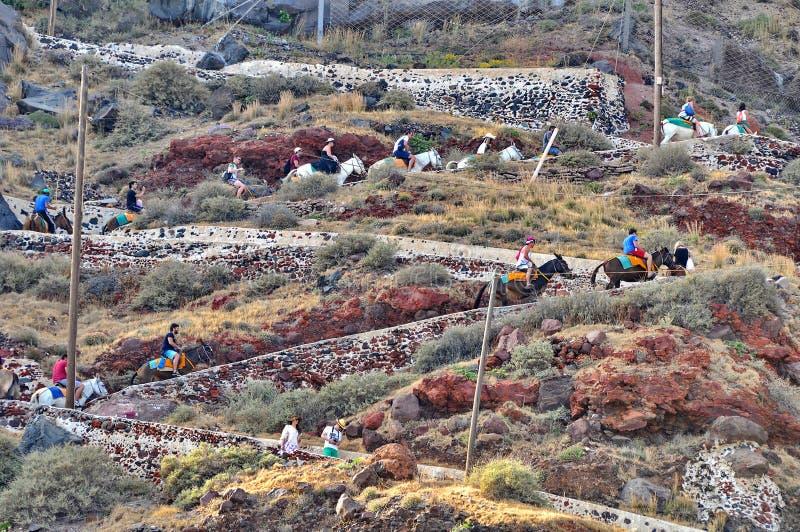 Eselfahrt in Santorini lizenzfreie stockfotografie