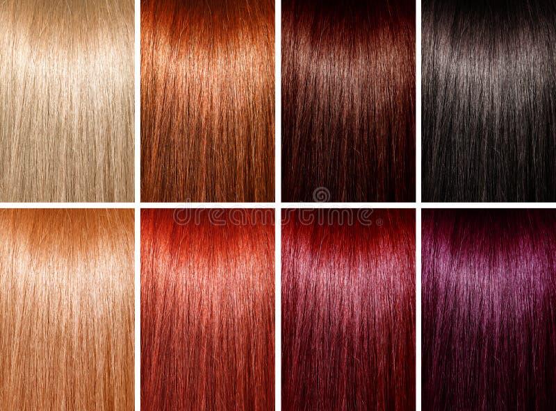 Esempio dei colori dei capelli immagini stock libere da diritti