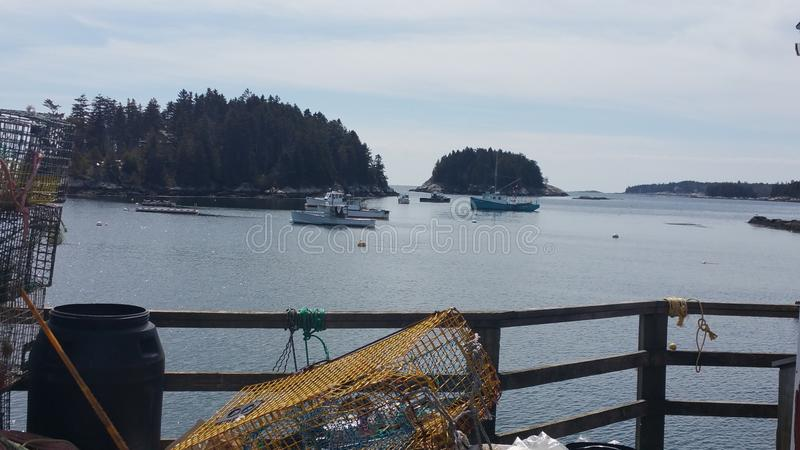 Esencia de Maine imagen de archivo libre de regalías