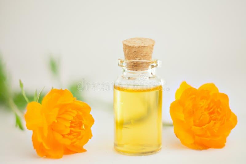 Esencja kwiaty na stole w pięknym szklanym słoju zdjęcie royalty free