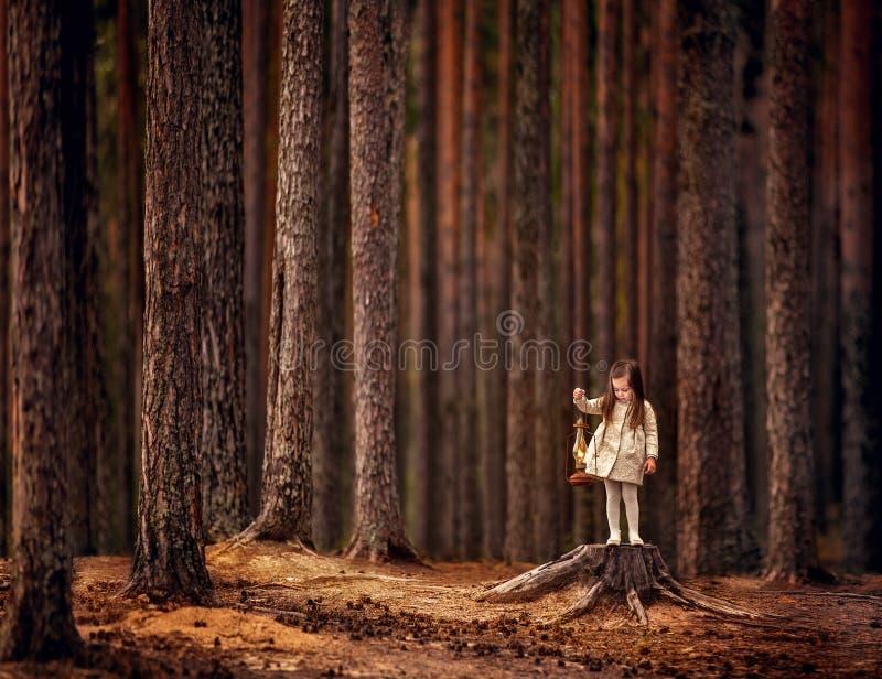 Esenya w lesie zdjęcia stock