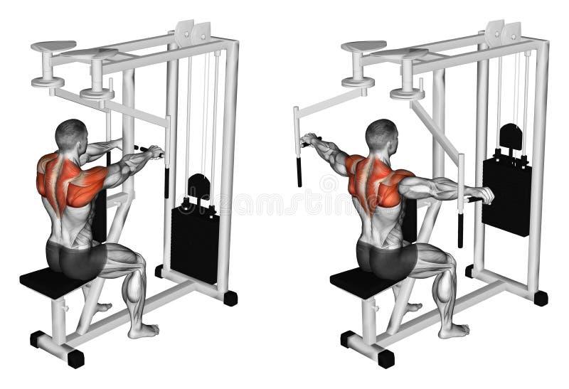 esercitarsi Mani di deviazione sul simulatore per i deltoidi posteriori illustrazione vettoriale