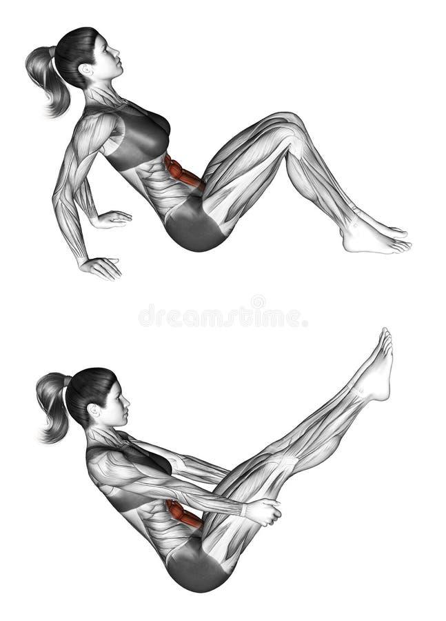 Esercitazione di forma fisica Posa della barca femmina illustrazione vettoriale