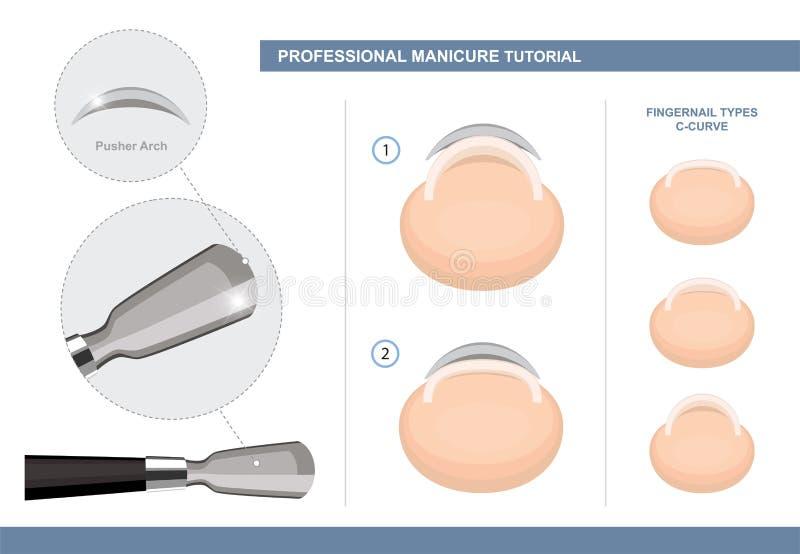 Esercitazione professionale del manicure Come usare uno spingitoio della cuticola Tipi dell'unghia Strumenti di estensione e del  illustrazione di stock