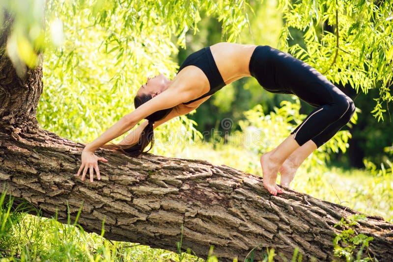 Esercizi di yoga all'aperto nel parco, bella donna della foresta nel vestito nero di sport sport fotografie stock