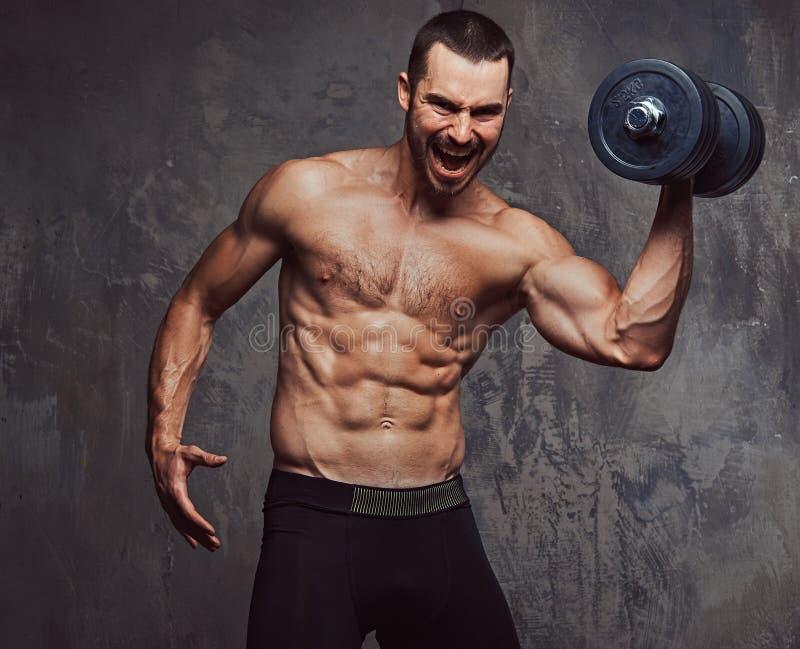Esercizio facente maschio senza camicia barbuto atletico brutale con dumbb fotografie stock libere da diritti