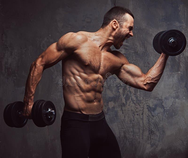 Esercizio facente maschio senza camicia barbuto atletico brutale con dumbb immagine stock