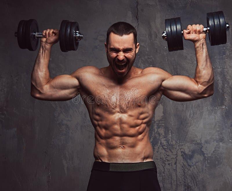 Esercizio facente maschio senza camicia barbuto atletico brutale con dumbb immagini stock