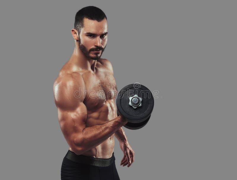 Esercizio facente maschio senza camicia barbuto atletico brutale con dumbb immagine stock libera da diritti
