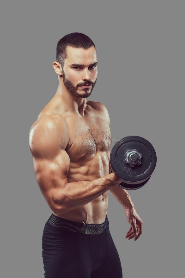 Esercizio facente maschio senza camicia barbuto atletico brutale con dumbb immagini stock libere da diritti