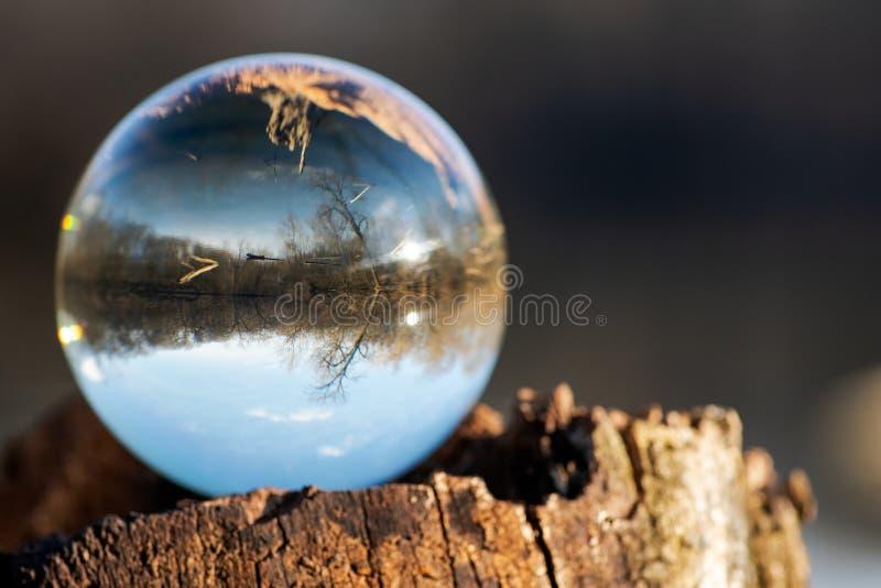 Esfera clara de quartzo na casca, rhytidome, lago refletindo, floresta, céu fotografia de stock