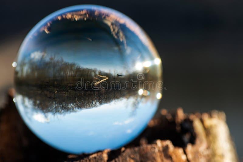Esfera clara de quartzo na casca, rhytidome, lago refletindo, floresta, c?u fotografia de stock royalty free