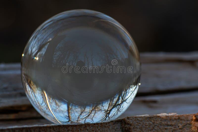 Esfera clara de quartzo na casca, rhytidome, lago refletindo, floresta, c?u imagens de stock
