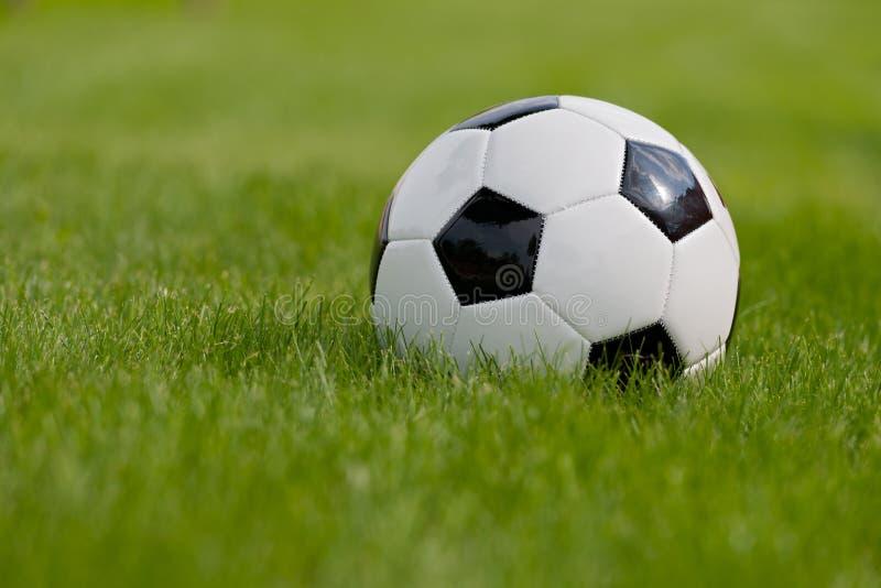 Esfera de futebol no campo verde fotos de stock royalty free