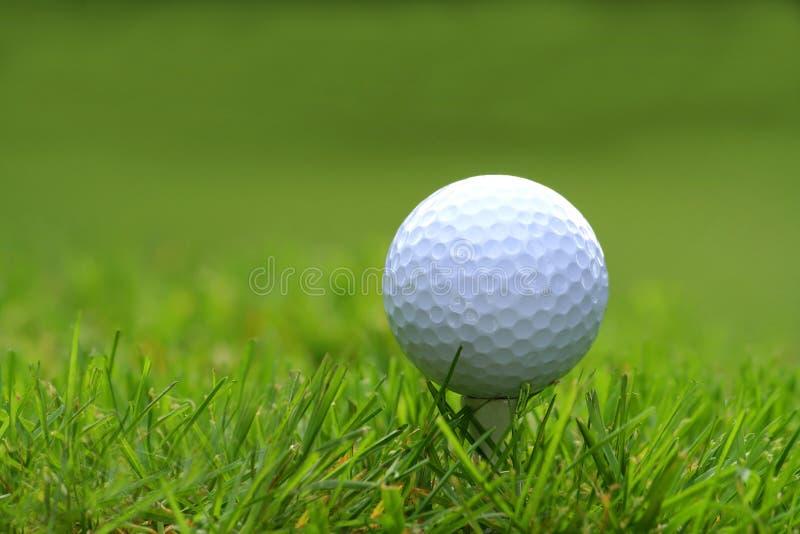 Esfera de golfe com T fotografia de stock royalty free