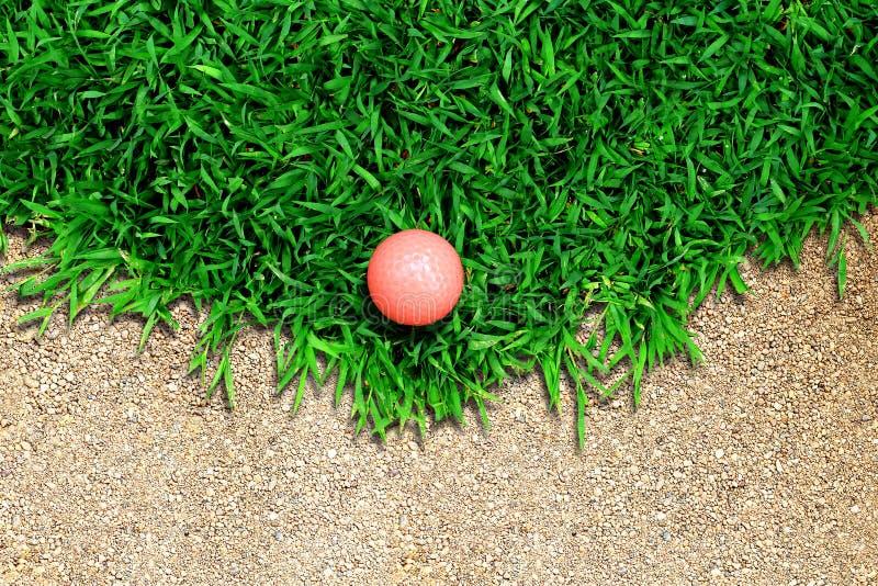 Esfera de golfe na grama imagens de stock royalty free