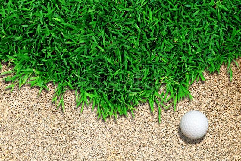 Esfera de golfe na grama fotos de stock royalty free