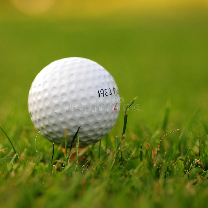Esfera de golfe na grama fotos de stock