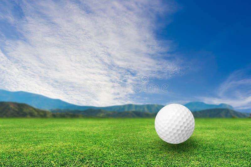 Esfera de golfe na grama fotografia de stock royalty free