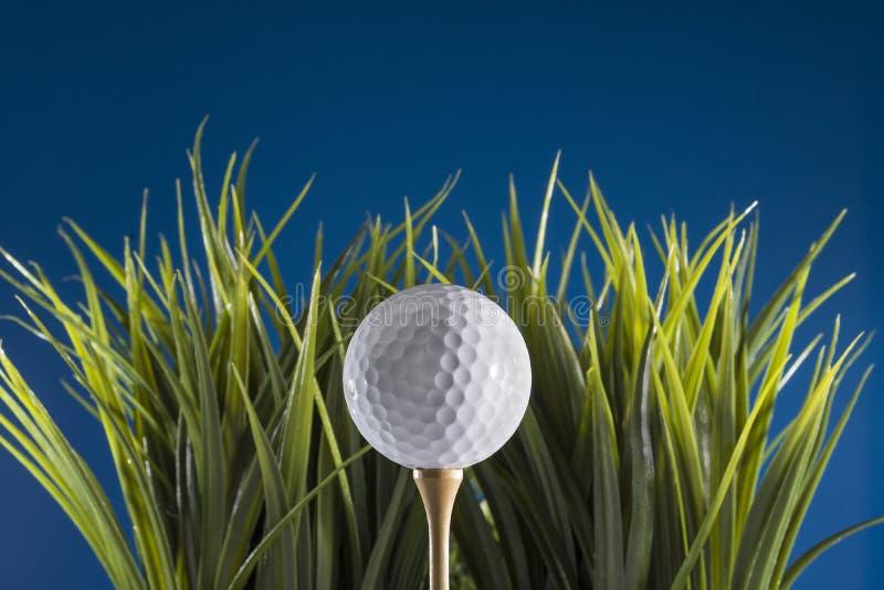 Esfera de golfe no T na grama fotos de stock royalty free