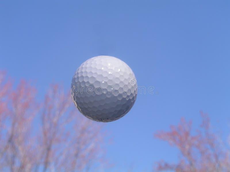 Esfera de golfe no vôo foto de stock royalty free