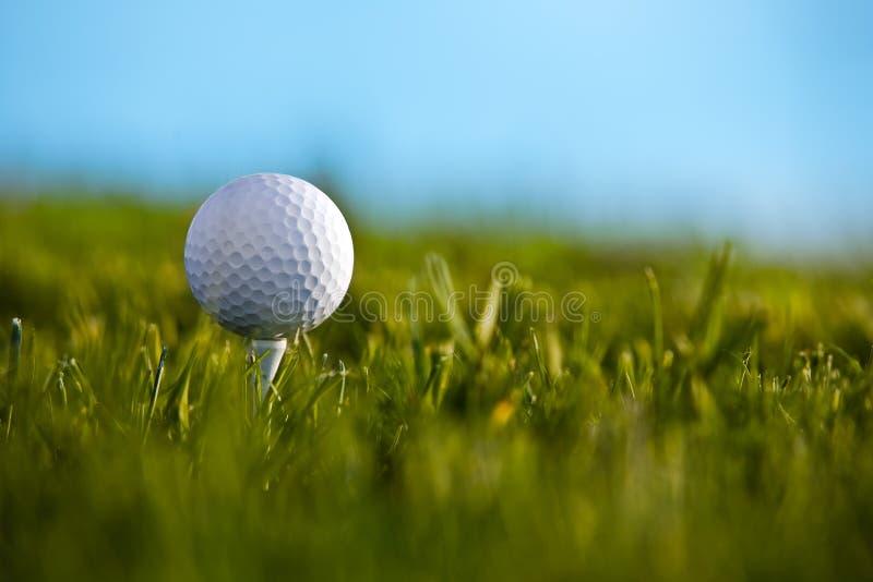 Esfera de golfe que senta-se no T com céu azul e grama b foto de stock royalty free