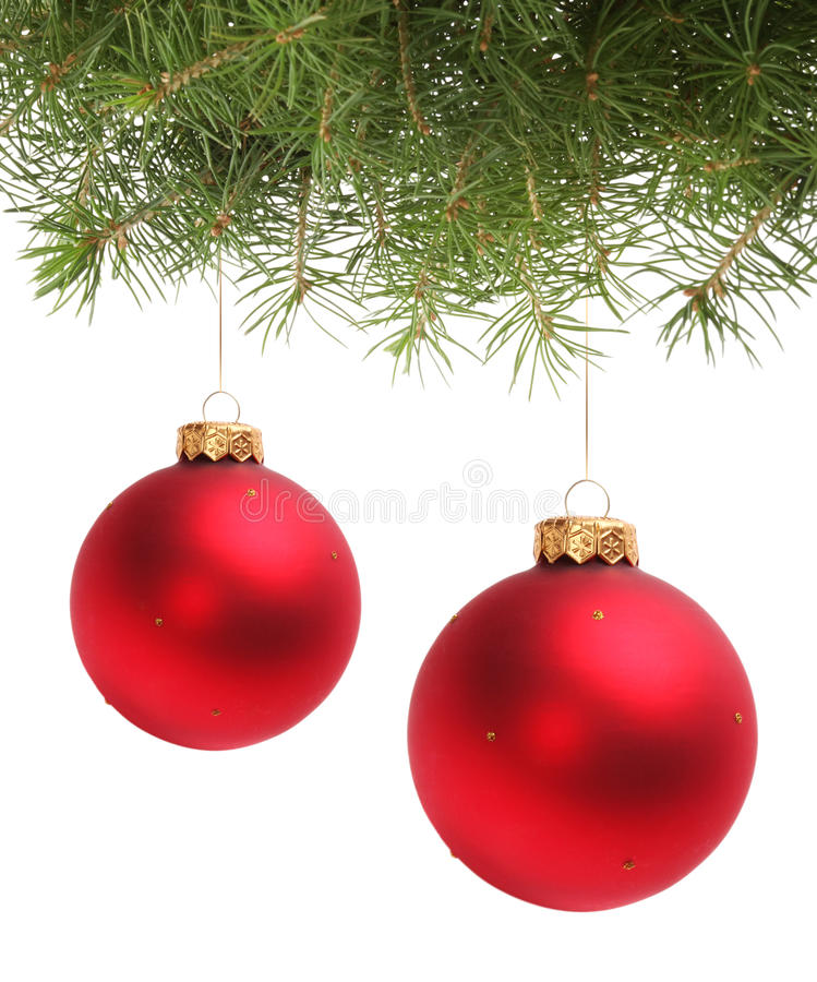 Esfera do Natal e filial spruce imagem de stock