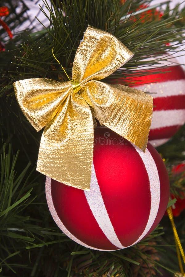 A esfera vermelha decora na filial da árvore de Natal fotografia de stock royalty free