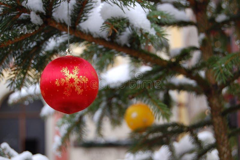 Esfera vermelha e amarela do Natal na árvore fotografia de stock royalty free